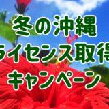 【快適・お得】沖縄でダイバーになるなら冬がおすすめな理由とは?