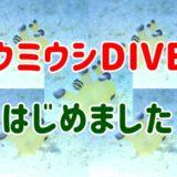 【沖縄ウミウシ虎の穴コース】マクロフォト派ダイバー集まれ!